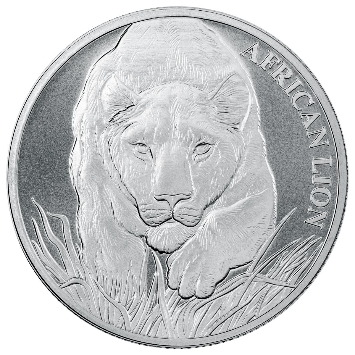 Tschad Löwe