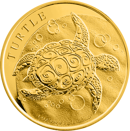 Schildkröte Niue Turtle