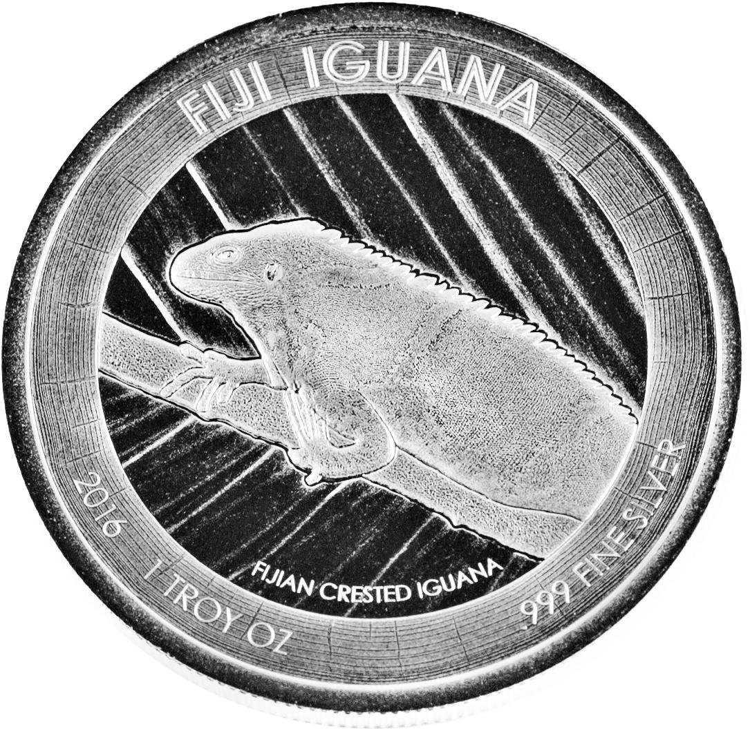 Fiji Leguan